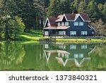 House Landscape Nature