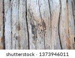 wood texture background surface ... | Shutterstock . vector #1373946011