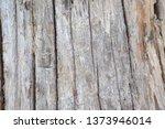 wood texture background surface ... | Shutterstock . vector #1373946014