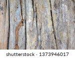wood texture background surface ... | Shutterstock . vector #1373946017