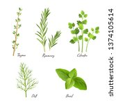 culinary herbs isolated on... | Shutterstock .eps vector #1374105614