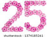 numeral 25  twenty five  from... | Shutterstock . vector #1374185261