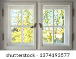 Wooden Window With Sunny Garde...