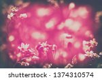 spring blossom background. ... | Shutterstock . vector #1374310574
