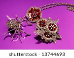 metal spider and a brooch on a... | Shutterstock . vector #13744693