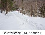 Foot Trail In Winter  Leading...