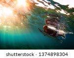 maldives   huraa   23 march... | Shutterstock . vector #1374898304