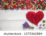 red currant heart and other...   Shutterstock . vector #1375362884