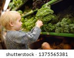 cute toddler boy in a food... | Shutterstock . vector #1375565381