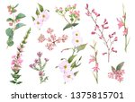 hand drawn watercolor set with...   Shutterstock . vector #1375815701