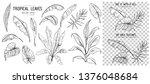 set of tropical leaves. hand... | Shutterstock .eps vector #1376048684