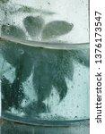 green plant behind a window...   Shutterstock . vector #1376173547