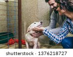 Stock photo happy young couple at dog shelter adopting a dog 1376218727