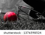 pink cricket ball with halmet...   Shutterstock . vector #1376598524