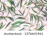 flowers composition. eucalyptus ... | Shutterstock . vector #1376641961