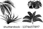 set. black and white leaves of...   Shutterstock .eps vector #1376657897