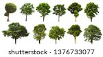 Stock photo isolated tree set located on a white background large images are suitable for all types of work 1376733077