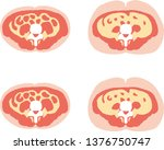 visceral fat stored within the... | Shutterstock .eps vector #1376750747