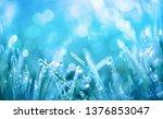 spring green grass on meadow... | Shutterstock . vector #1376853047