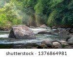 deep forest stream water...   Shutterstock . vector #1376864981