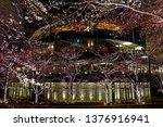 beautiful pink sakura cherry... | Shutterstock . vector #1376916941