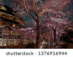 beautiful pink sakura cherry... | Shutterstock . vector #1376916944