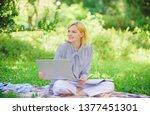 business lady freelance work... | Shutterstock . vector #1377451301