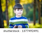 white toddler boy playing in a... | Shutterstock . vector #1377492491