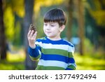 white toddler boy playing in a... | Shutterstock . vector #1377492494