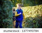 little boy is playing hide and... | Shutterstock . vector #1377493784