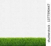 green grass frame transparent...   Shutterstock . vector #1377590447