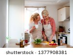 a young woman with senior... | Shutterstock . vector #1377908381