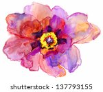 Watercolor Flower Peony.