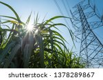 Power Transmission Tower And...