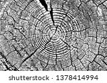 grunge texture wood ring... | Shutterstock .eps vector #1378414994