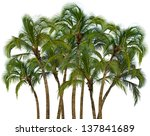 Group Of Coconut Palm Trees...