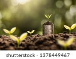 the seedlings are growing on... | Shutterstock . vector #1378449467