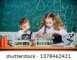 at chemistry lesson. little... | Shutterstock . vector #1378462421