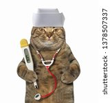 The cat doctor in a medical hat ...