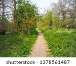 a footpath through the woodland ... | Shutterstock . vector #1378561487