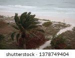 Small photo of storm on the beach. The seas are raging and the skies show the tropical storm as the power of nature is demonstrated. palm tree pulled by gusty wind on a tropical beach