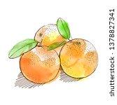 watercolor oranges whole...   Shutterstock .eps vector #1378827341