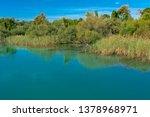 old broken tree branches fell... | Shutterstock . vector #1378968971