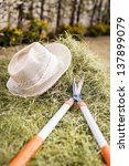 straw hat on the hay in the... | Shutterstock . vector #137899079