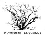 hdr monochrome in black and...   Shutterstock . vector #1379038271