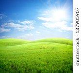 Field Of Fresh Grass On A...