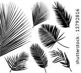 tropical leaf vector | Shutterstock .eps vector #13792816