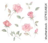hand painted floral elements... | Shutterstock . vector #1379314814