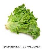Bunch Of Fresh Green Salad...
