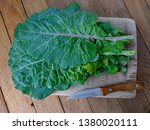 Kale Cabbage Leaf Bunch. Tusca...